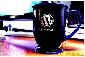 Top 10 WordPress Widgets and Plugins