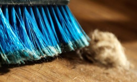 Spring Clean Your Church Management Software